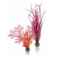 biOrb Easy plant 2x medium red/pink