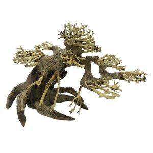 Superfish Bonsai Driftwood S
