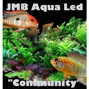 JMB community aqua light 54w / 180cm