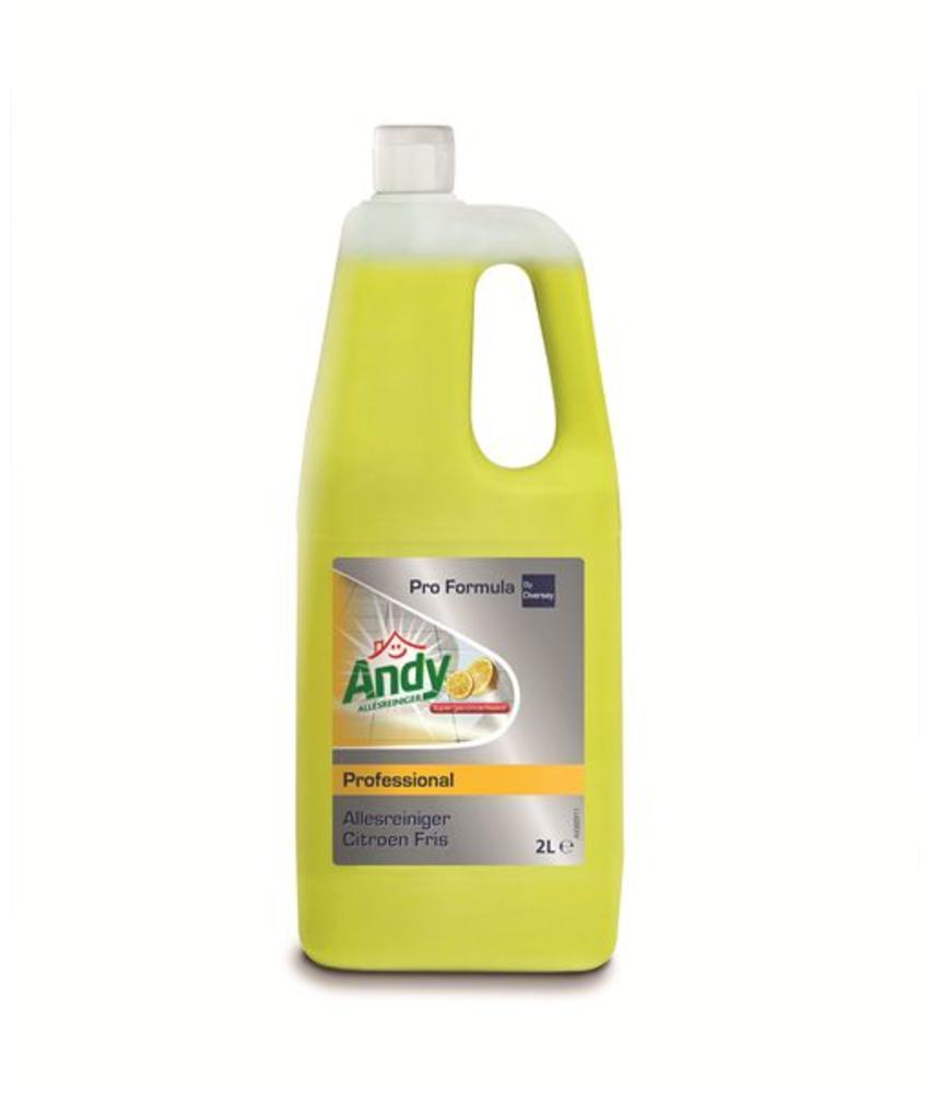 Andy Pro Formula Allesreiniger Citroen Fris 2 L