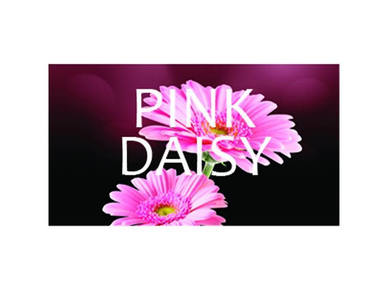 Hygiene Vision VisionAir - Maxi Pink Daisy
