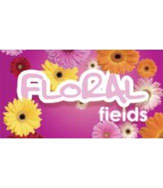 Hygiene Vision VisionAir - Maxi Floral Fields