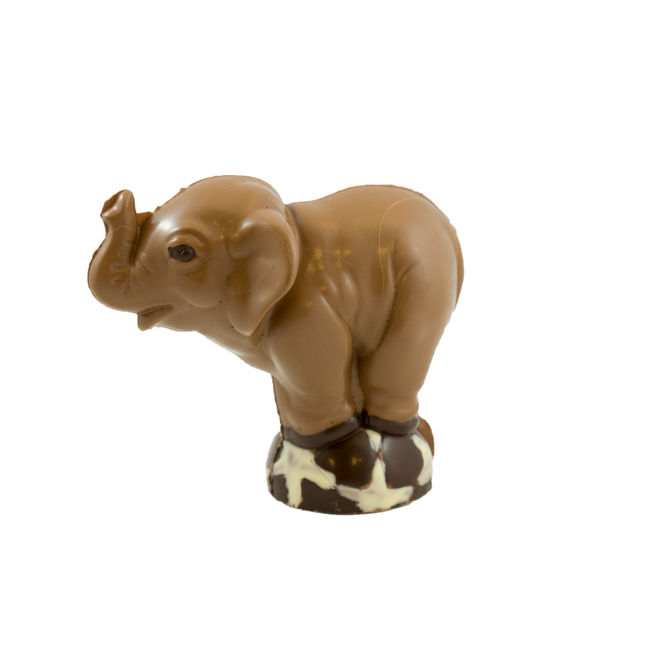 Chocolade olifant 16 x 18 x 10 cm