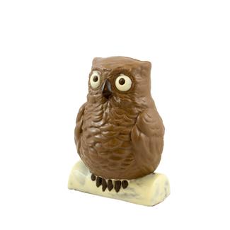 Chocolade Meneer de Uil 20 cm