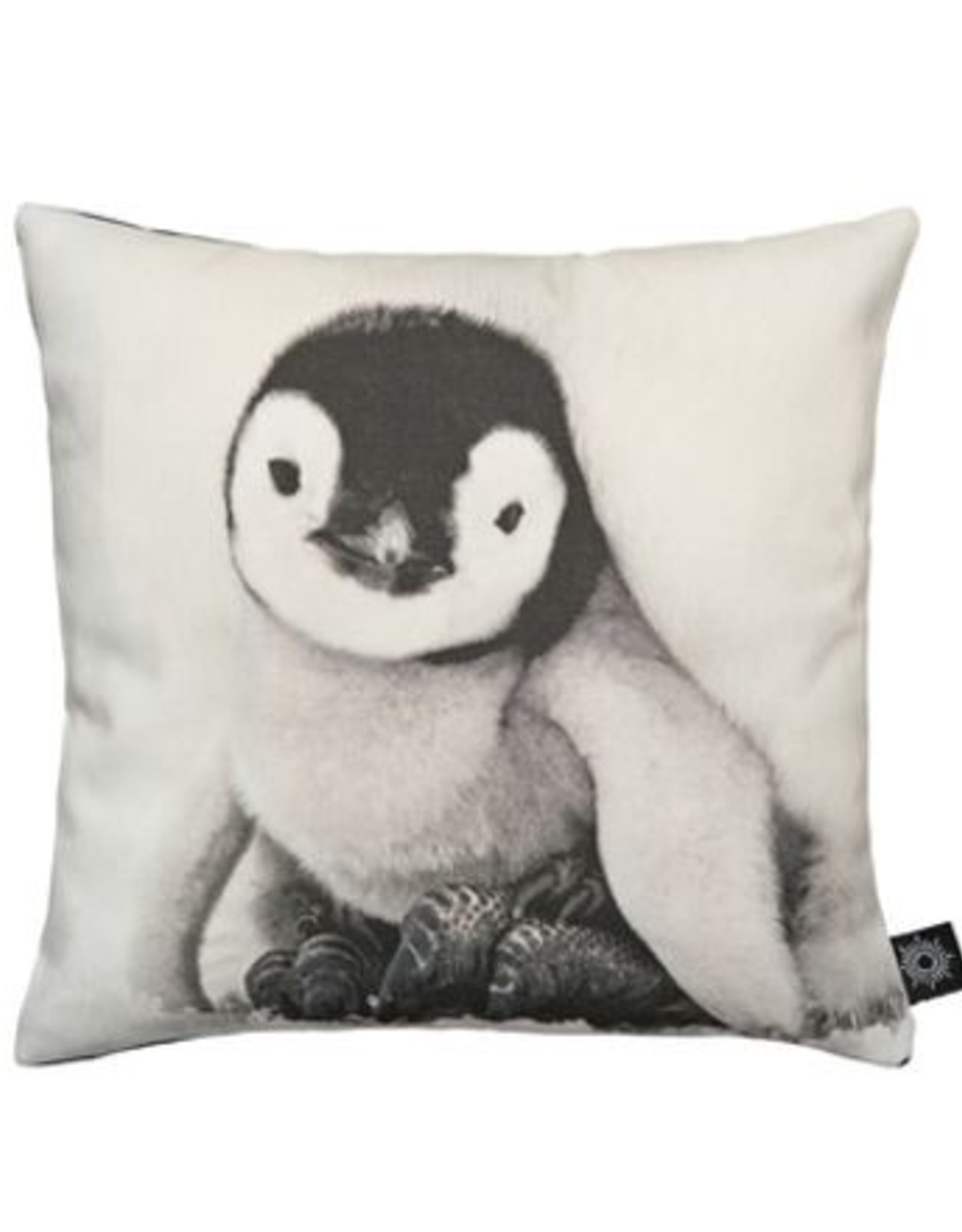 By Nord Baby Penguin