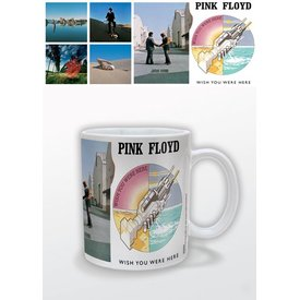 Pink Floyd Wish You Were Here - Mok