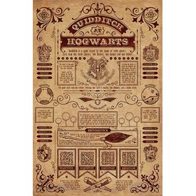Harry Potter Quidditch At Hogwarts - Maxi Poster