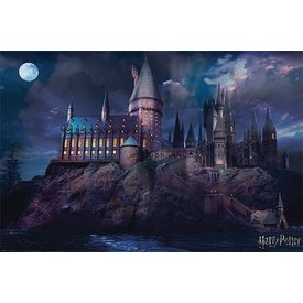 Harry Potter Hogwarts - Maxi Poster