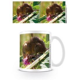 Planet Earth 2 Harvest Mouse - Mug