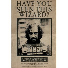 Harry Potter Wanted Sirius Black - Maxi Poster