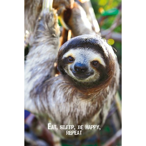 Eat, Sleep, Be Happy, Repeat - Maxi Poster