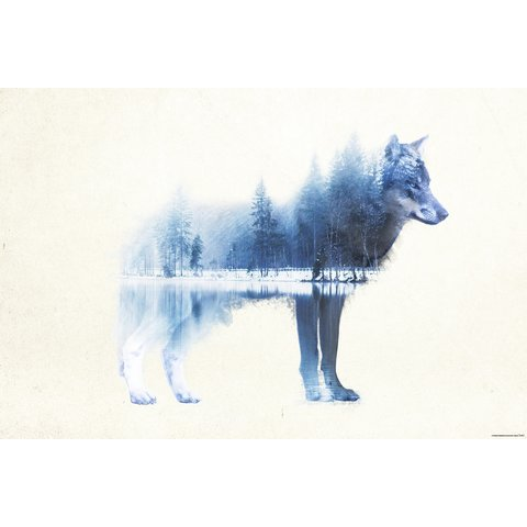 Forest Wolf - Maxi Poster