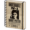Harry Potter Sirius & Harry A5 3D Lenticular Cahier de Note