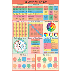 Educational Basics Maxi Poster
