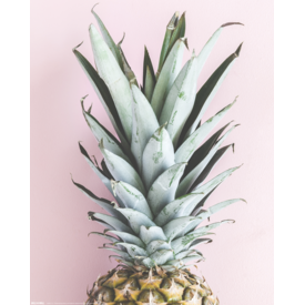 Pineapple Mini Poster