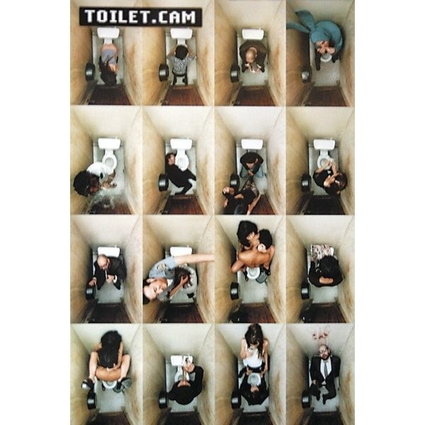 Toilet Cam Collage Maxi Poster