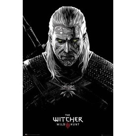 The Witcher Toxicity Poisoning Maxi Poster