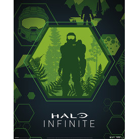 Halo Infinite Master Chief Hex Mini Poster