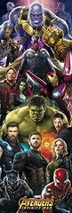 Products tagged with avengers door poster