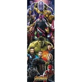Marvel Avengers Infinity War Door Poster