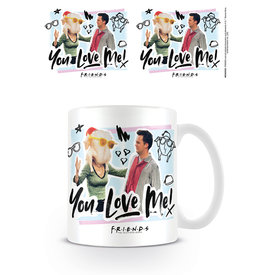 Friends You Love Me Mug