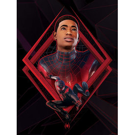 Spider-Man Miles Morales Be Greater - Canvas 60x80cm