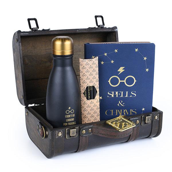 Harry Potter Trouble Finds Me Premium Gift Set