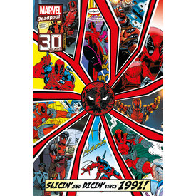 Deadpool Shattered - Maxi Poster