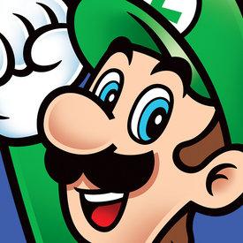 Super Mario Luigi - Canvas 40x40cm