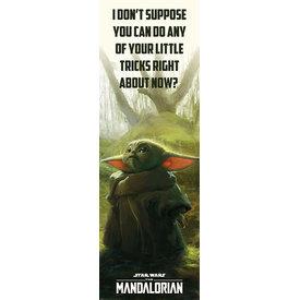 Star Wars The Mandalorian Special Tricks Deurposter