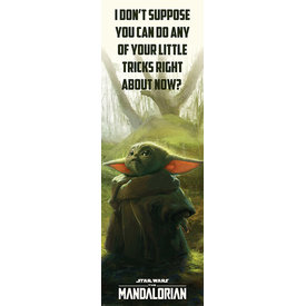 Star Wars The Mandalorian Special Tricks Door Poster