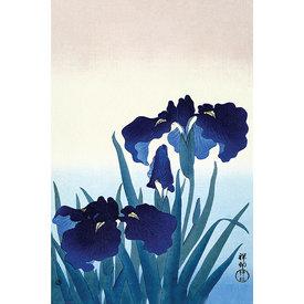 Ohara Koson Iris Flowers - Maxi Poster