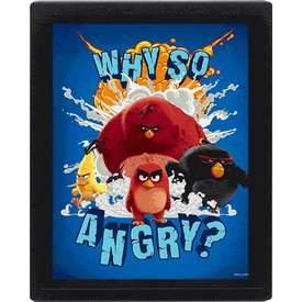 Angry Birds Why So Angry? - 3D Lijst