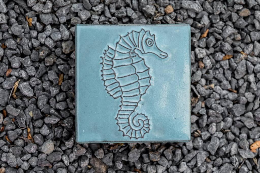 Motiv Pflasterstein Seepferdchen in türkis