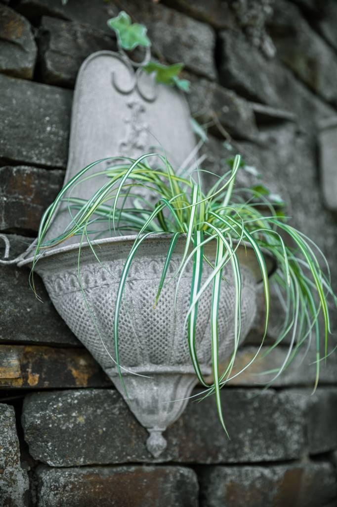 französischer Blumenkorb in antik grau