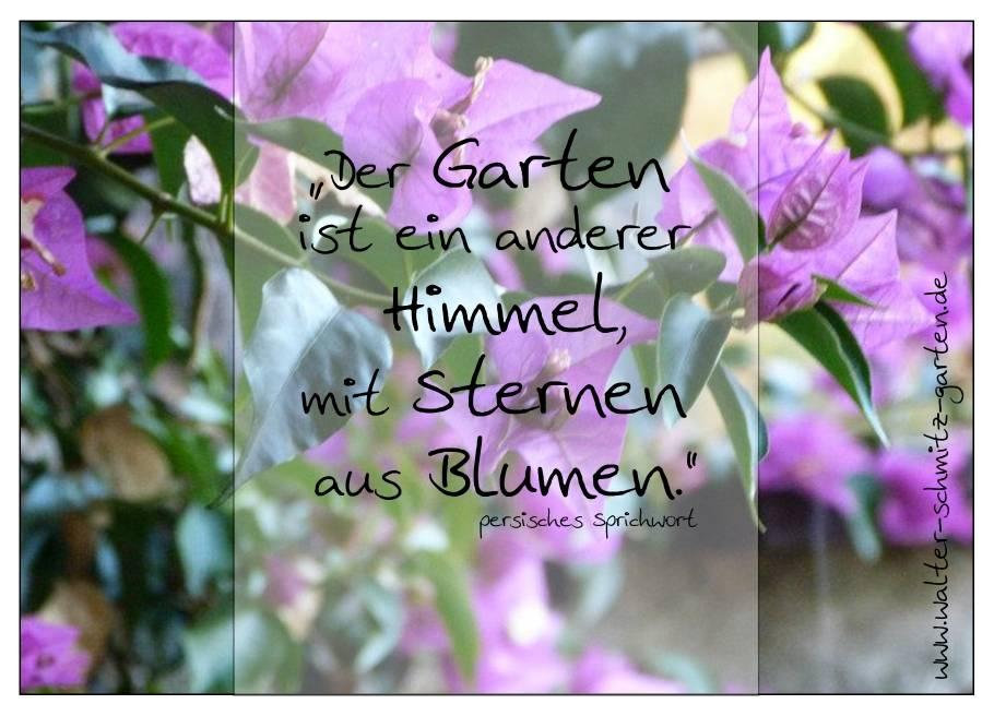 """Postkarte """"Der Garten ist ein anderer Himmel, mit Sternen aus Blumen"""""""