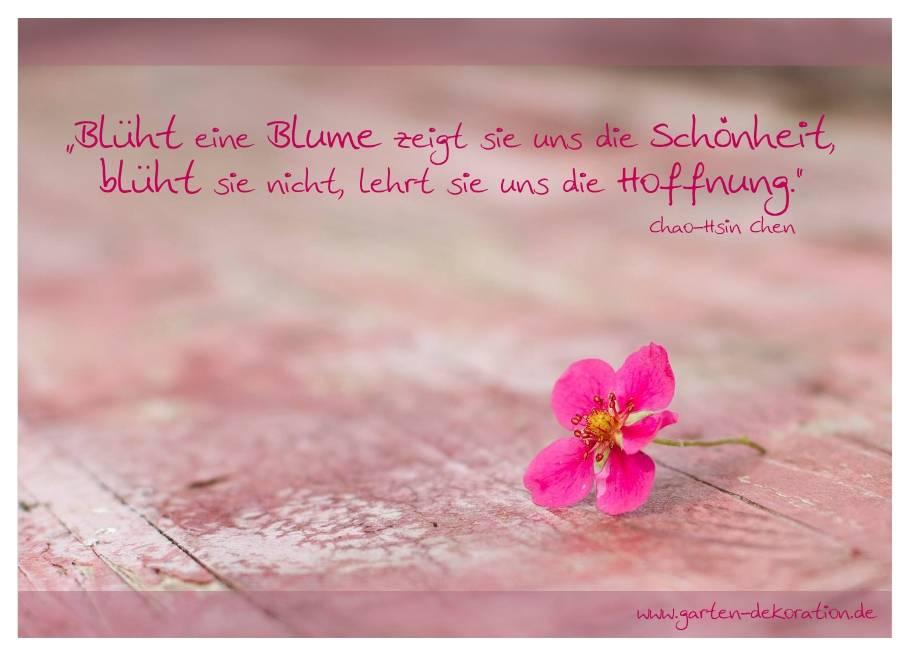 """Postkarte """"Blüht eine Blume zeigt sie uns ihre Schönheit"""""""