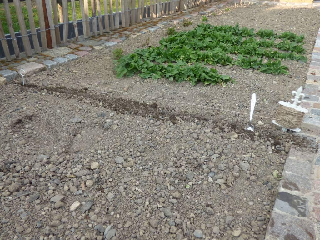 Gartenschnur mit Halter