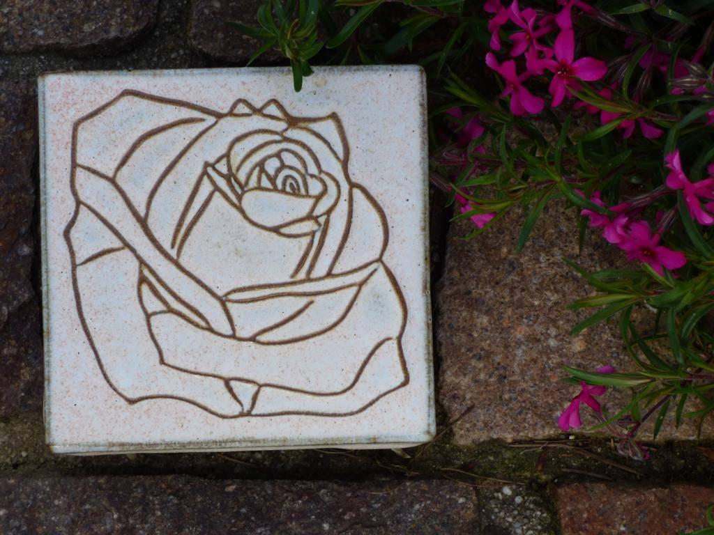 Motiv Pflasterstein Rose in beige