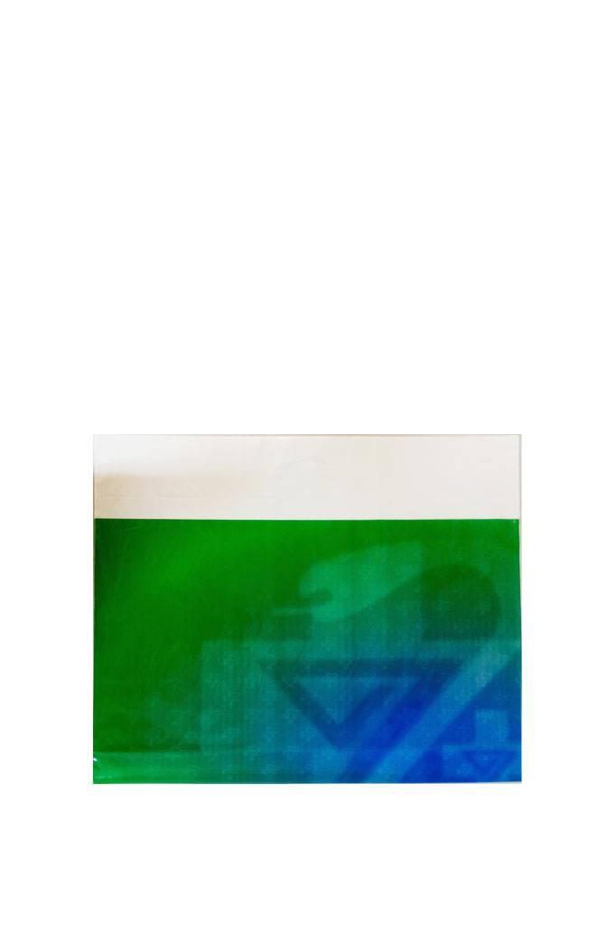 650x510 Draagtas grijze binnenzijde 250 p.doos!!