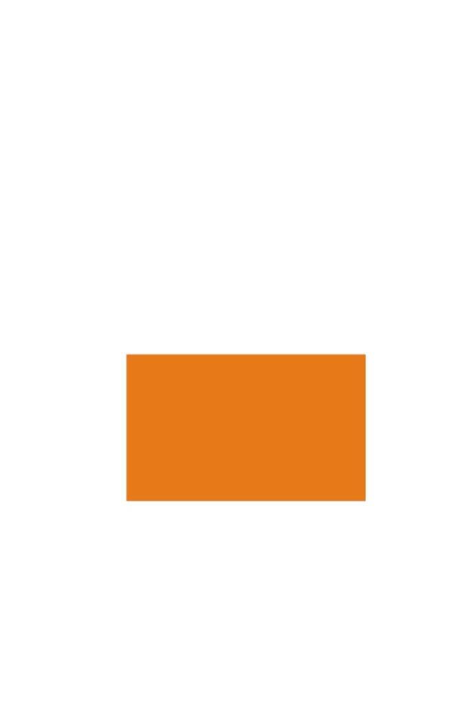 Prijstangetiket 26x16 Fluor rechthoek