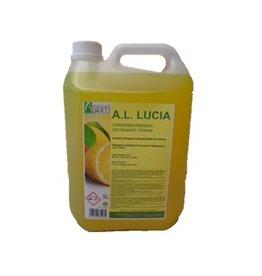 Detergent Lucia Citroen Budget
