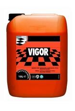 Vigor 10L