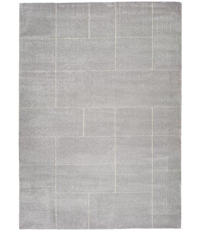 Vloerkledenwebshop.nl Tanum 50415 zilver