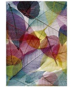 Colors 21854 Multi - Copy
