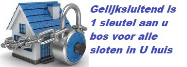 ISEO F6 Extra S SKG*** Cilinder 105 mm 45-60 wil u de cilinder gelijk sluitend hebben of voorzien van knop ?