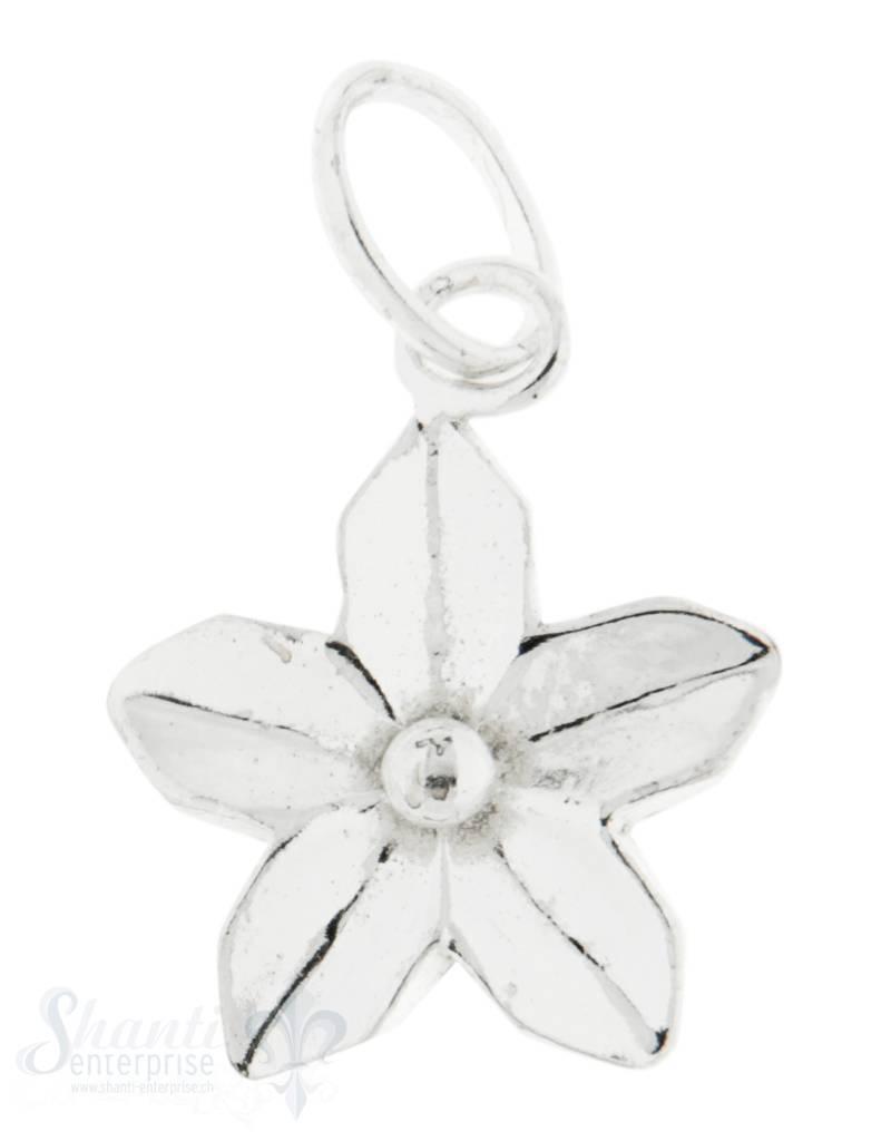 Silberanhänger Blume Rahmen 5 Blatt länglich gebogen poliert mit Öse 13 mm