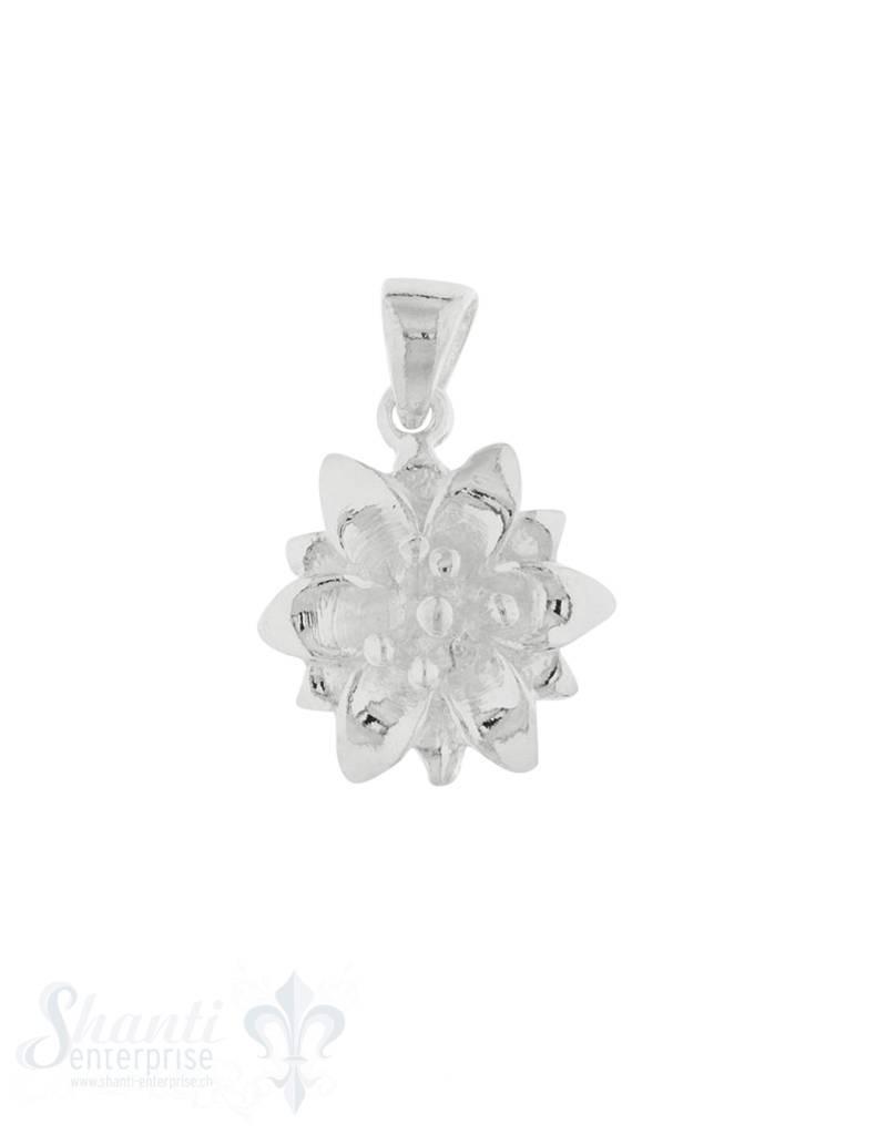 Anhänger Silber hell Edelweiss 14 mm