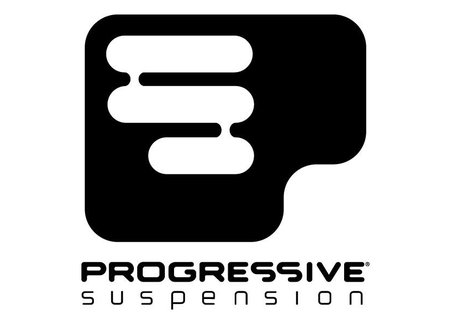 Progressive Suspension