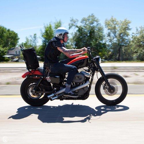 Lowbrow Customs 39 MM Voorvork covers voor Harley Davidson Sportster / Dyna